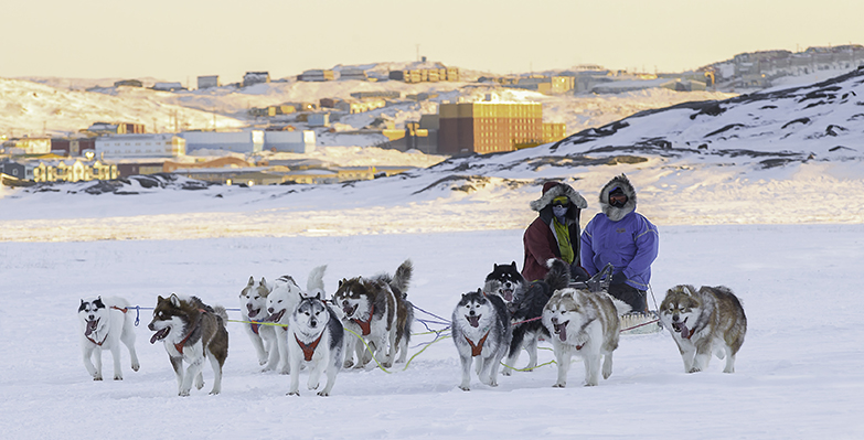 Dog Sledding Outside of Iqaluit